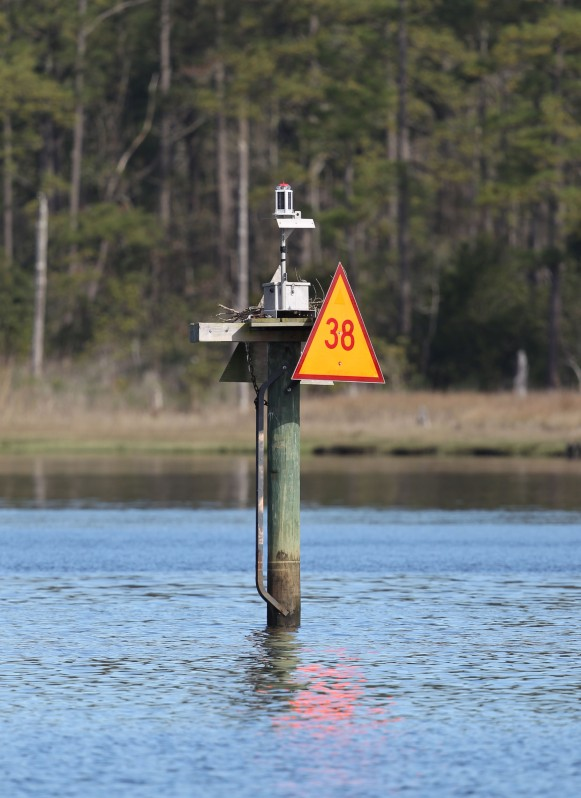 Channel marker with nesting platform